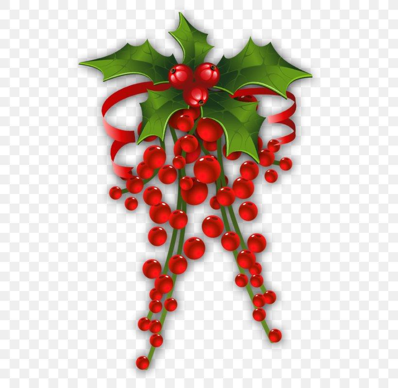 Mistletoe Christmas Phoradendron Tomentosum Candy Cane Clip Art, PNG, 537x800px, Mistletoe, Aquifoliaceae, Aquifoliales, Berry, Candy Cane Download Free