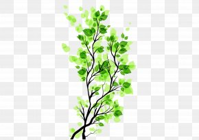 Green Leaves Branch Image Free To Pull The Material - Branch Leaf PNG