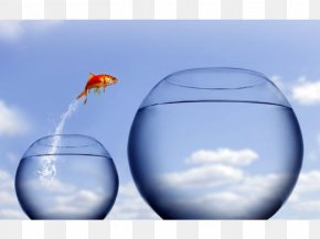 Leap Of Faith Author Jumping Stock Photography PNG
