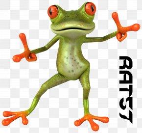 Frog - Frog Animation 3D Computer Graphics Cartoon Clip Art PNG