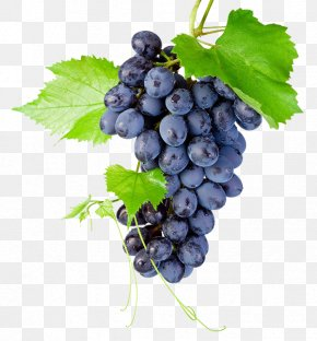 A Bunch Of Grapes - Kyoho Grapevines Raceme PNG