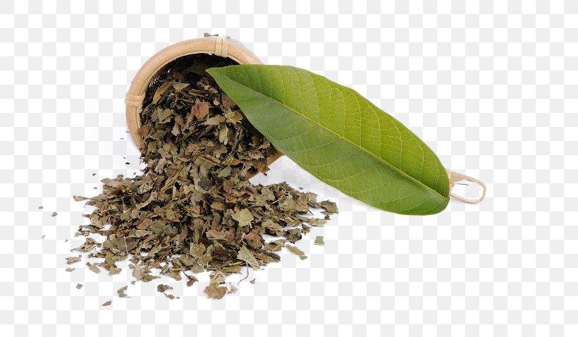 Tea Cafe Drink Download, PNG, 720x478px, Tea, Cafe, Drink, Dry Tea, Gratis Download Free