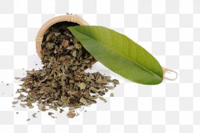 Tea - Tea Cafe Drink Download PNG