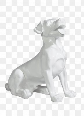 Dog - Dog Breed Non-sporting Group Mannequin Maryland PNG