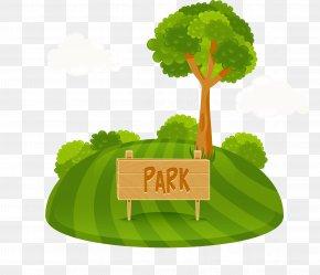 Full Of Green Park - Park Tree Cartoon Clip Art PNG