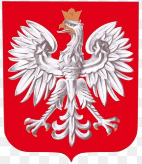 Team - Coat Of Arms Of Poland Flag Of Poland National Symbols Of Poland PNG