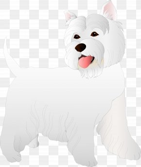 Dog - West Highland White Terrier Dog Breed Puppy Companion Dog PNG