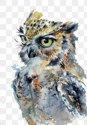 Fierce Owl - Owl Watercolor Painting Drawing Art PNG
