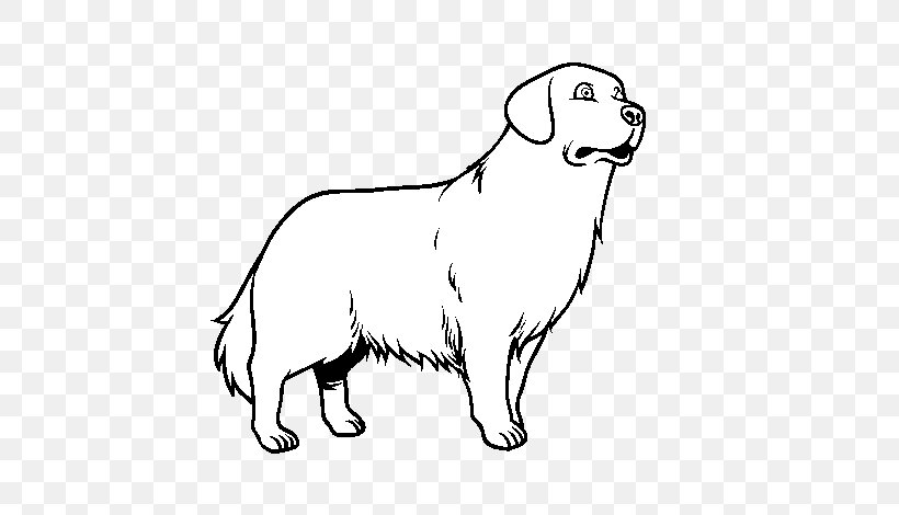 Chocolate Lab Puppy Coloring Pages | Hund malen, Cartoon tiere ... | 470x820
