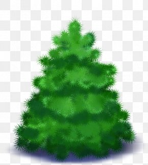 Spruce New Year Tree Christmas Day PNG