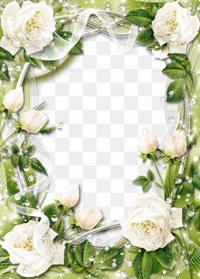 White Rose Border - Picture Frame Rose White Clip Art PNG