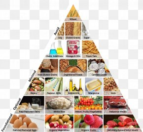 Food Pyramid - Food Pyramid Food Group Health Western Pattern Diet PNG