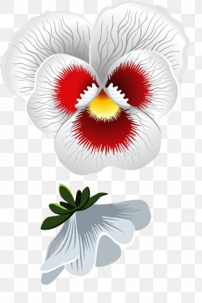 Flower - Pansy Flower Stock Photography Clip Art PNG