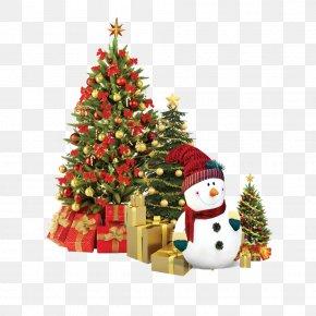 Christmas - Christmas Tree Christmas Decoration Christmas Ornament Gift PNG