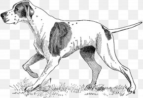 Dog Pointer Cliparts - German Shorthaired Pointer Braque Francais Puppy Pet Sitting PNG