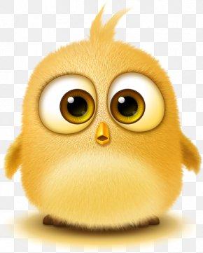 Fluffy Birds - Bird Rendering Software Technology PNG