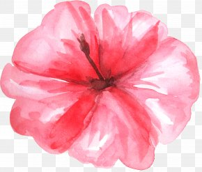 Fresh Watercolor Hot Plant Flowers - Watercolor Painting Clip Art PNG