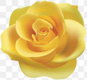 Yellow Rose Clip Art - Rose Yellow Clip Art PNG
