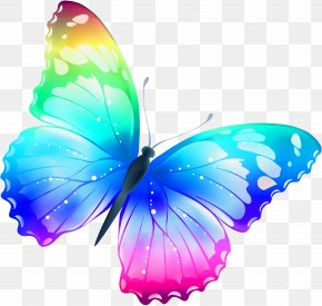 Large Transparent Multi Color Butterfly Clipart - Butterfly Clip Art PNG