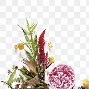 Flower Plants - Flower Paper Photography Petal PNG