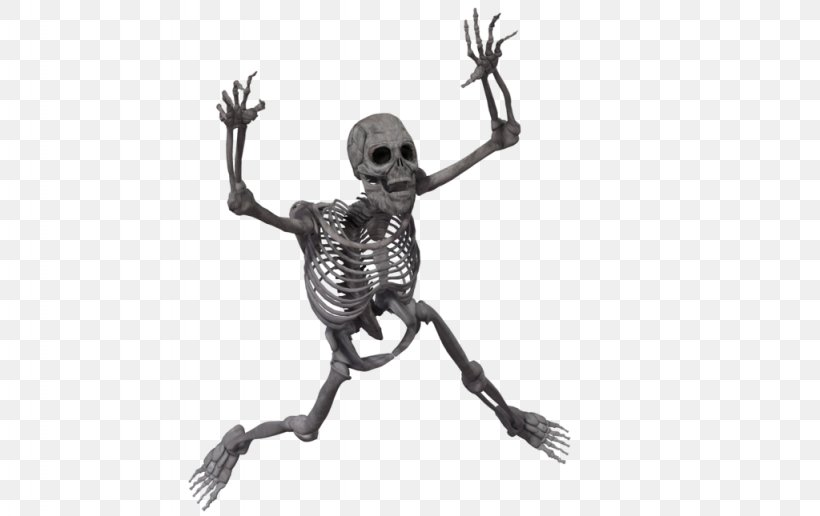Human Skeleton Desktop Wallpaper Transparency And Translucency, PNG, 1024x645px, Skeleton, Art, Black And White, Bone, Endoskeleton Download Free