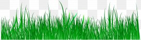 Vector Spring Green Meadow Creative Panels - Wheatgrass Green Commodity Computer Wallpaper PNG