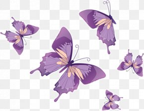 Floating Butterfly - Butterfly Royalty-free Euclidean Vector Clip Art PNG