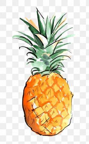 Pineapple - Los Angeles Drawing Art Wallpaper PNG