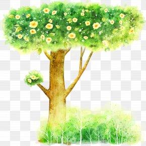 Trees - Cartoon Illustration PNG