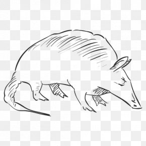 Rat - Rat Drawing Whiskers Chinese Zodiac Clip Art PNG