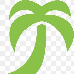 Tally - Arecaceae Areca Palm PNG