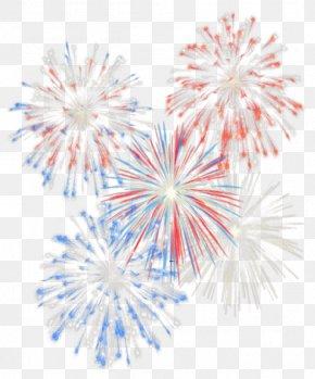 Fireworks - Chicago Charles River Esplanade Independence Day Fireworks PNG