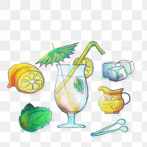 Vector Lemonade - Lemonade Illustration PNG