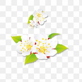 White Peach - Art Floral Design Happy New Year PNG