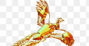 Bird - American Crow Bird Common Raven Clip Art PNG