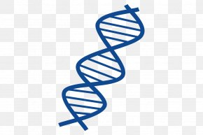 Helix Streamer - Shareware Treasure Chest: Clip Art Collection DNA Nucleic Acid Double Helix PNG