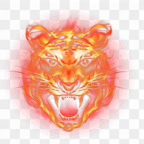 Tiger - Tiger Fire Flame PNG