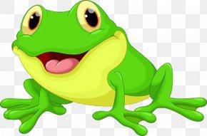 Cartoon Frog - Kermit The Frog Cartoon Clip Art PNG