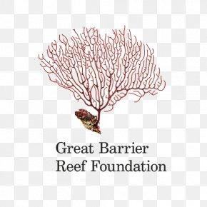 Sea Reef - Raine Island Great Barrier Reef Coral Reef Organization PNG