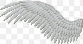 Wings - Angel Wing Feather Clip Art PNG