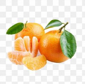 Orange Fruit - Mandarin Orange Tangerine Tangelo Fruit PNG