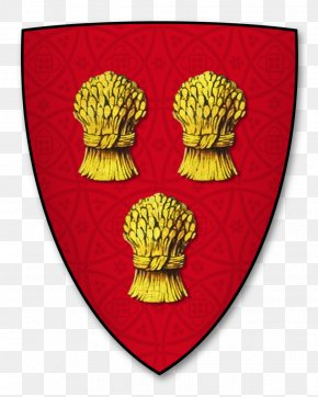 Shield - Shield Coat Of Arms Knight Crest Aspilogia PNG