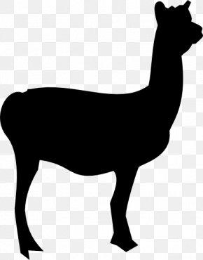Llama Head Cliparts - Llama Silhouette Clip Art PNG