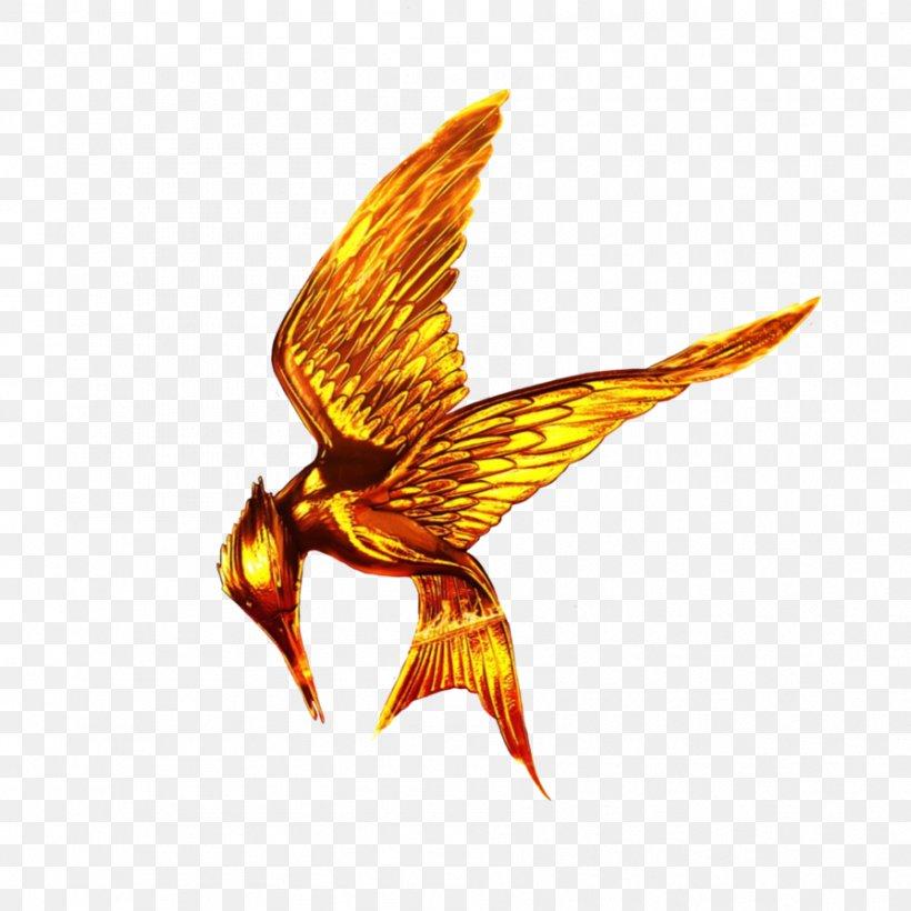 Catching Fire Finnick Odair Mockingjay The Hunger Games, PNG, 894x894px, Catching Fire, Beak, Bird, Bird Of Prey, Eagle Download Free