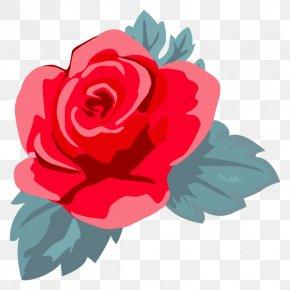 Garden Roses Illustration Flower Clip Art Cabbage Rose PNG