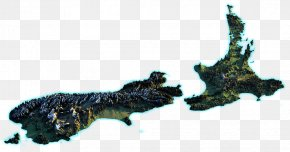 Walle - Organism PNG