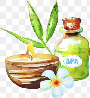 Drawing Spa Essential Oil - Spa Essential Oil PNG