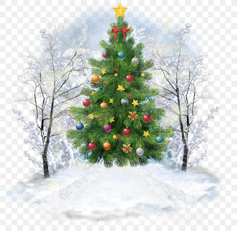 Christmas Tree Christmas Day Santa Claus Image, PNG, 774x800px, Christmas Tree, American Larch, Balsam Fir, Branch, Christmas Download Free