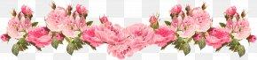 Pink Floral Background Spring - Rose Pink Flowers Clip Art PNG