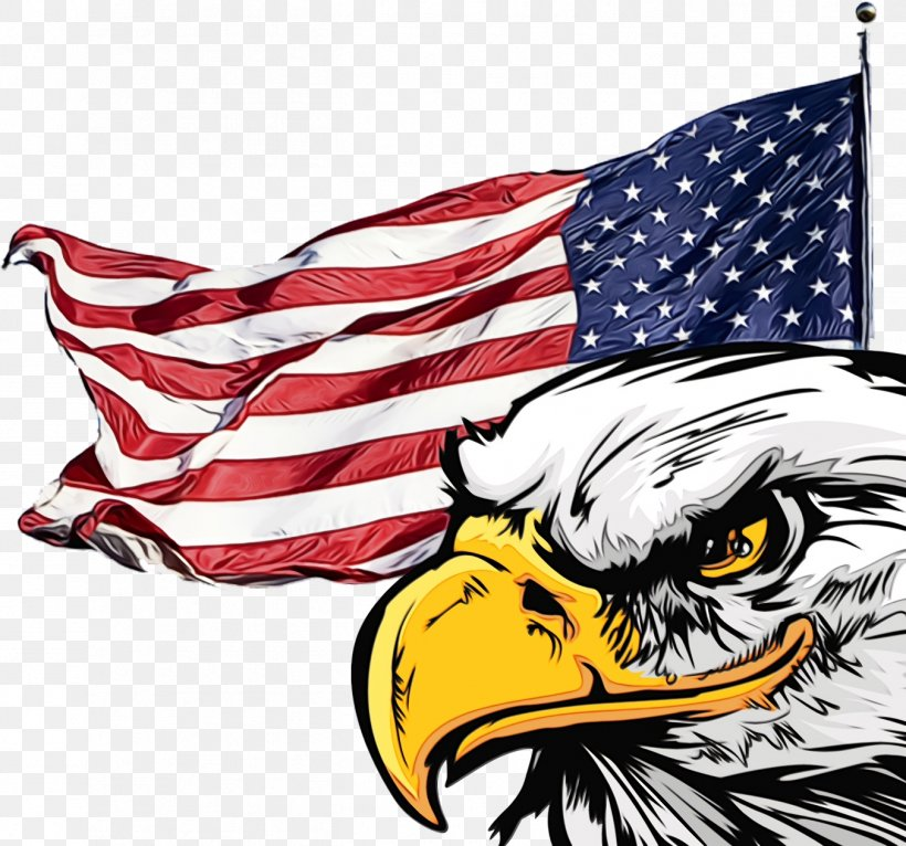 Veterans Day United States, PNG, 1352x1264px, 4th Of July, Fourth Of July, Accipitridae, American, American Flag Download Free